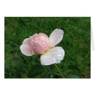 Antique Rose 3 Card