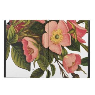Antique Rose Flower Art Illustration Drawing
