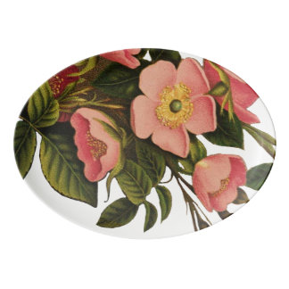 Antique Rose Flower Art Illustration Drawing Porcelain Serving Platter
