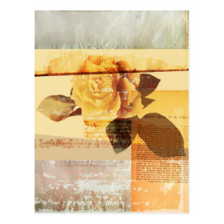 Antique Rose Postcard