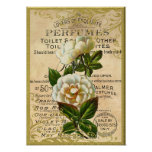 Antique Roses Perfume Poster
