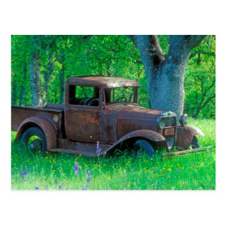 Antique rusted truck in a meadow postcard