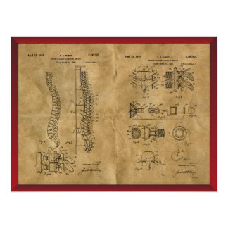 Antique Spine Drawing Poster