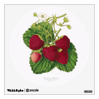 Antique Strawberry Print Wall Decal