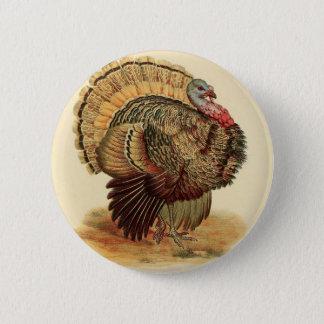 Antique Turkey illustration Thanksgiving 2 Inch Round Button