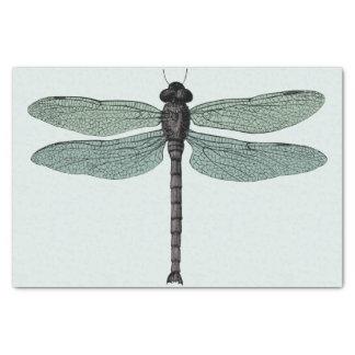 antique typographic vintage dragonfly tissue paper