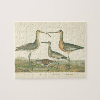 Antique Water Birds Marsh Illustration Jigsaw Puzzle