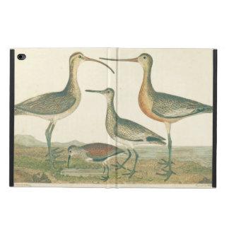 Antique Water Birds Marsh Illustration Powis iPad Air 2 Case