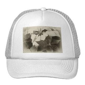 Antiqued Mixed Color Poinsettias 2 Hat