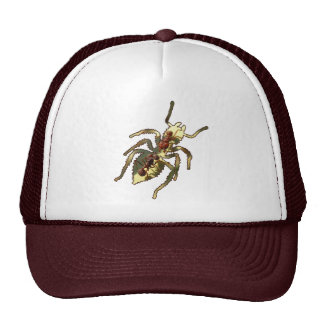 Ants & Attitude - Hat #1