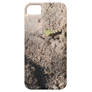 Ants Go Marching iPhone 5 Cases