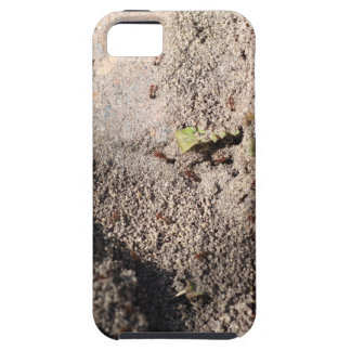 Ants Go Marching iPhone 5 Cover