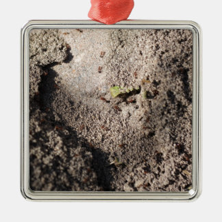 Ants Go Marching Metal Ornament