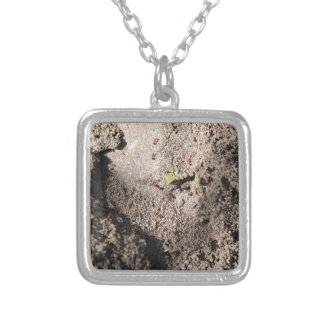 Ants Go Marching Silver Plated Necklace