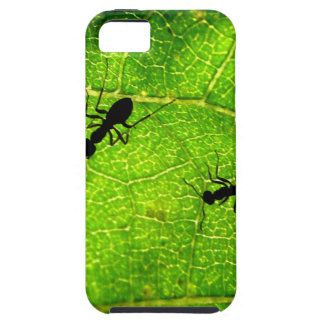 Ants Green Acre iPhone 5 Cover