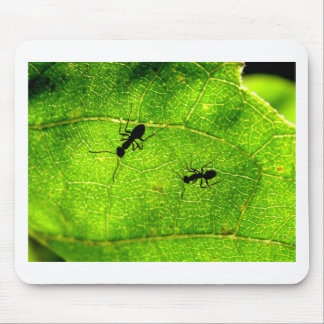 Ants Green Acre Mouse Pad