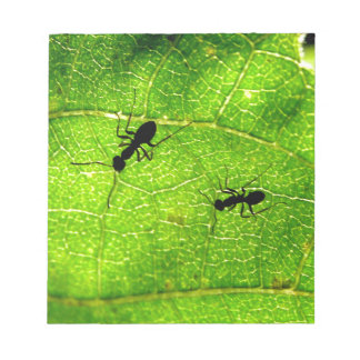 Ants Green Acre Notepad