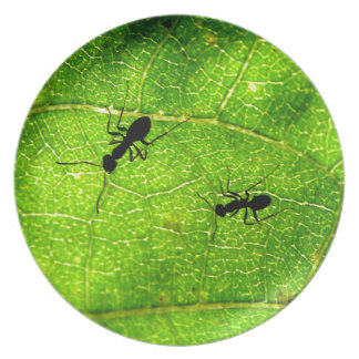 Ants Green Acre Plate