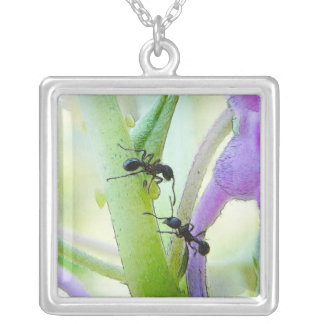 Ants In My Plants Silver Plated Necklace