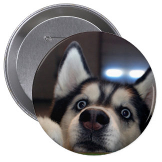 Anybody Out There? 4 Inch Round Button