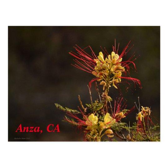 Anza, CA Postcard