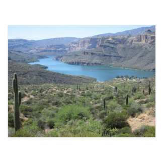 Apache Lake View Postcard