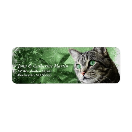 APAL - Christmas Silver Tabby Cat