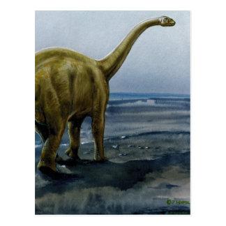 Apatosaurus (Brontosaurus) Illustration Postcard