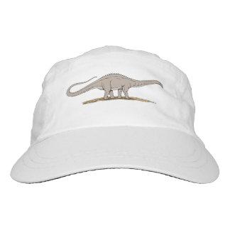 Apatosaurus Hat
