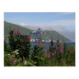 APL Crane in Dutch Harbor, Alaska Postcard
