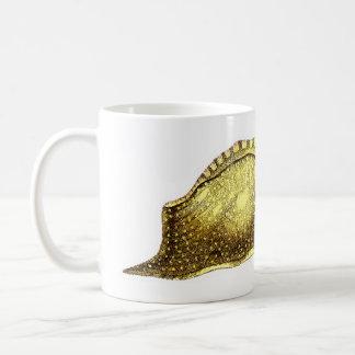 Aplysia fasciata coffee mug