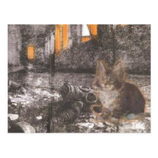 Apocalypse Kitty Postcard