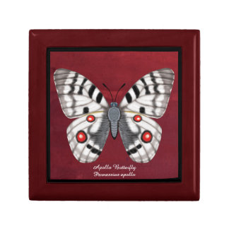 Apollo Butterfly Gift Box