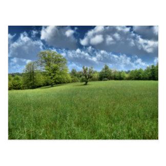 Appalachian Green Postcard