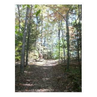 Appalachian Hiking Trail Postcard