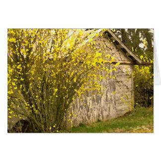 Appalachian Spring Card