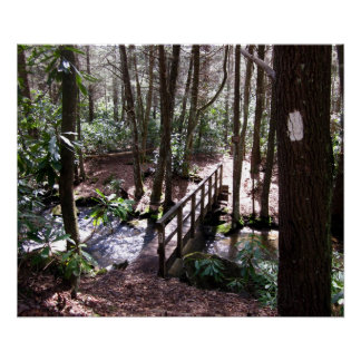 Appalachian Trail bridge at Laurel Fork Tennessee Poster