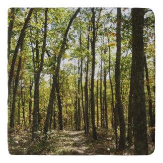 Appalachian Trail in October at Shenandoah Trivet
