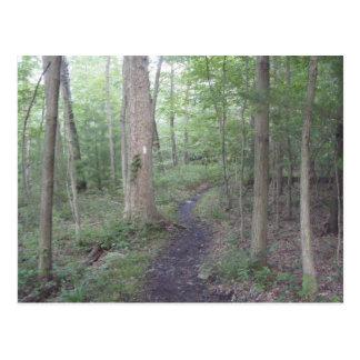 appalachian trail pennsylvania south mountain postcard