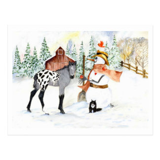 Appaloosa colt and Snowman Postcard