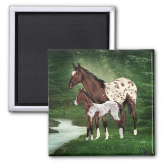 Appaloosa Horse Mare and Foal Square Magnet