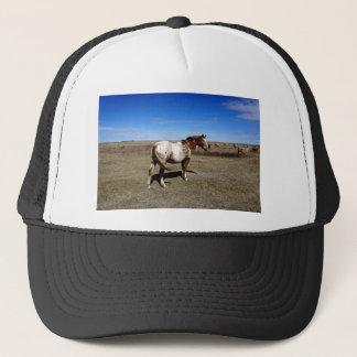 Appaloosa horse on summer prairies trucker hat
