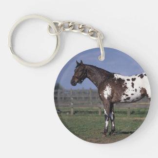 Appaloosa Horse Standing Keychain
