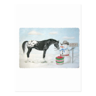 Appaloosa horse with snowman, rectangular postcard