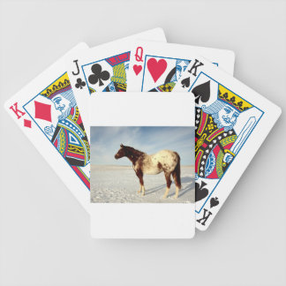 Appaloosa Mare in Winter Snow Bicycle Playing Cards