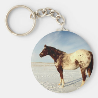 Appaloosa Mare in Winter Snow Keychain