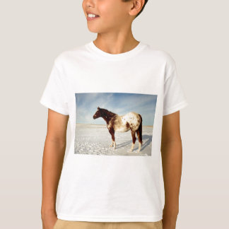 Appaloosa Mare in Winter Snow T-Shirt