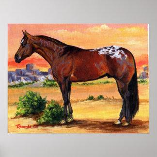 Appaloosa Profile Horse Portrait Poster