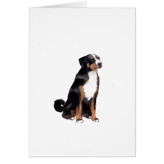 Appenzeller (A) - (aka Appenzel Cattle Dog) Card