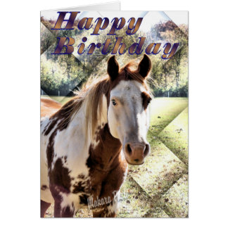 Appie Horse Bday Card-customize Greeting Card